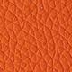 P66 - orange