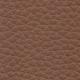 P61 brown